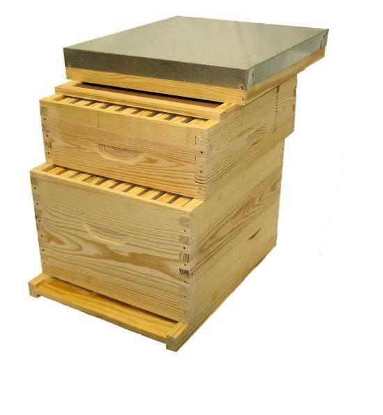 ruche dadant apiculture jean riondet. Black Bedroom Furniture Sets. Home Design Ideas