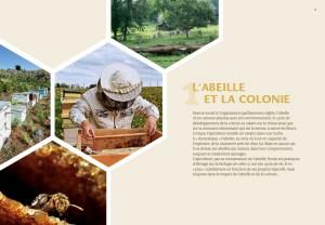 livre-apiculture-rucher-durable4