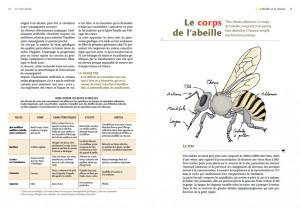 livre-apiculture-rucher-durable6