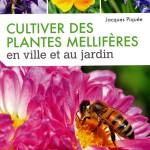 cultiver des plantes mellifères en ville et au jardin
