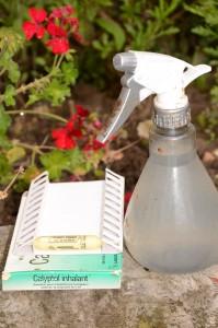 4 pulverisateur avec eau parfumée eucalyptol